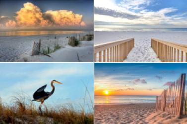 Orange Beach Alabama Condomniums Homes