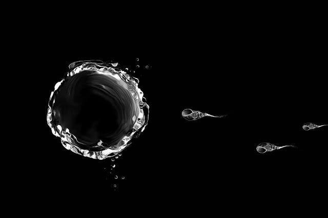 hacked-sperm-chemo-drugs-cervical-cancer-cells