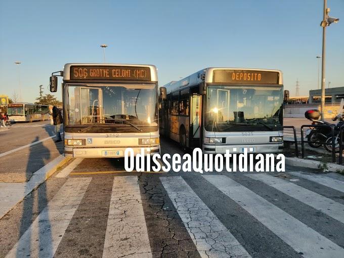 Niente bus vecchi su strada di domenica?