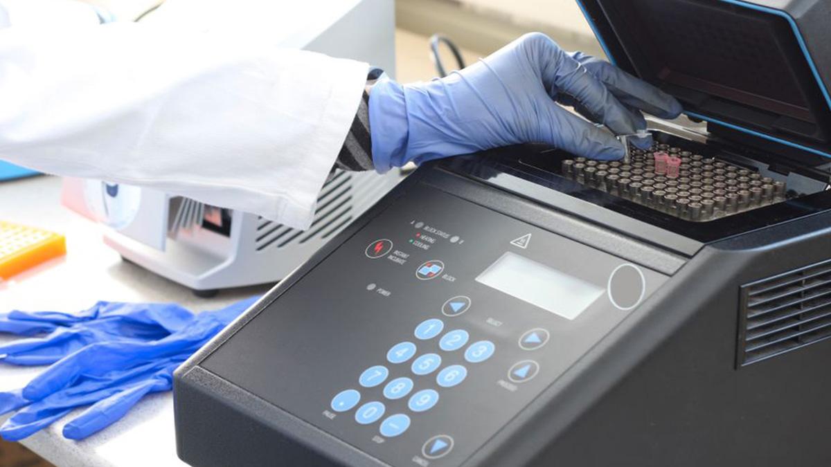 DESPEGAR PRUEBAS PCR DESTINOS CARIBE MEXICANO 02