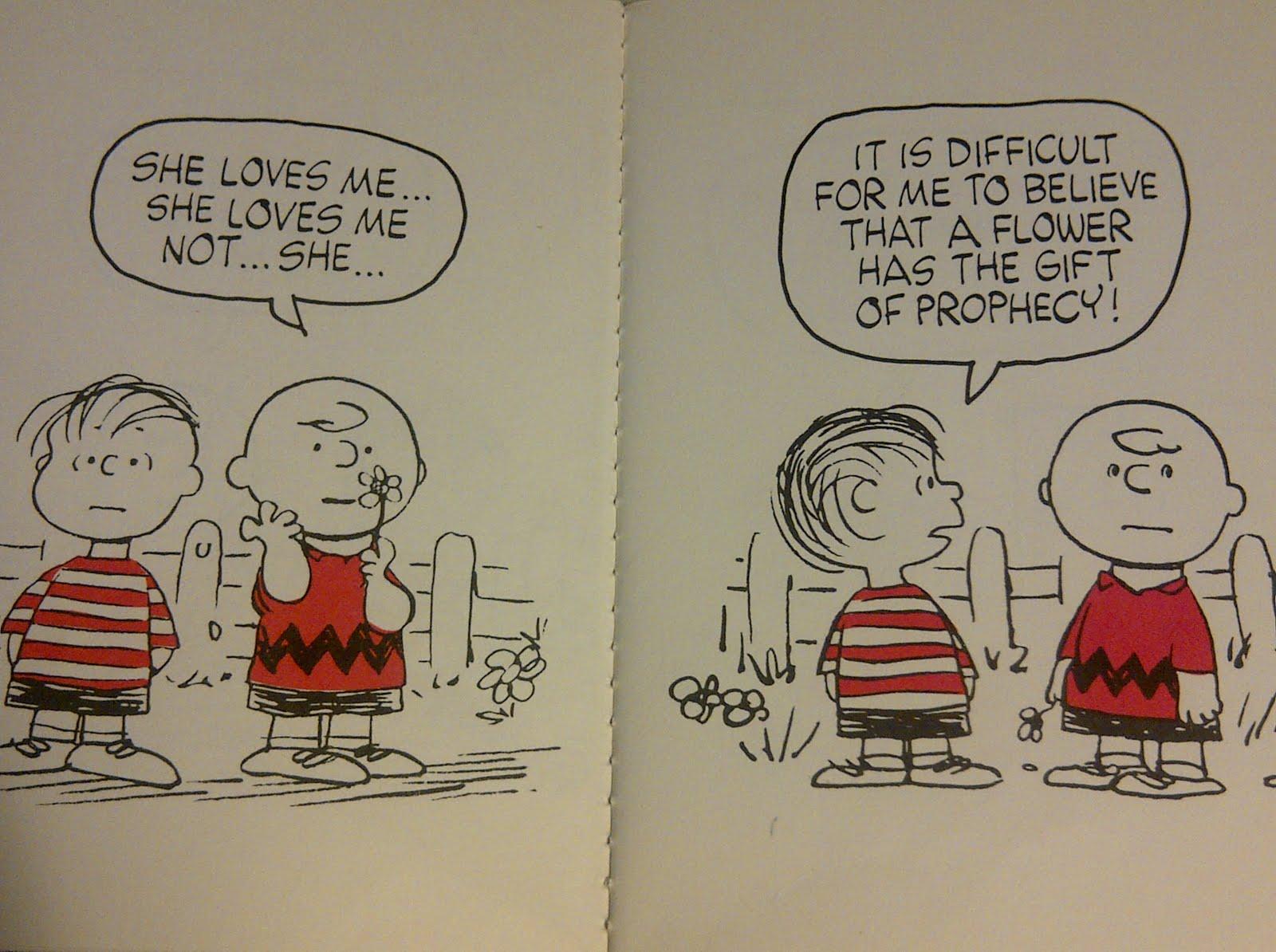 Linus Van Pelt Quotes: Charlie Brown, Linus Van Pelt And Brown Shoe On Pinterest