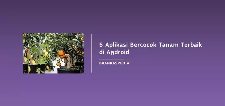 Aplikasi Bercocok Tanam Terbaik di Android