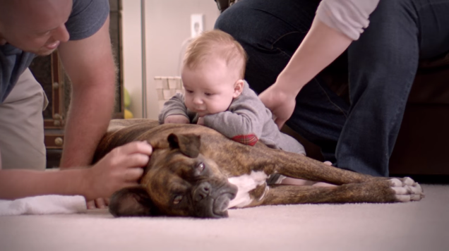 """I Make Dog Chow"" by Purina and Leo Burnett Chicago"