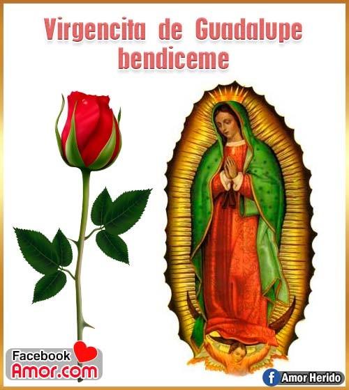 imagen de virgen de guadalupe
