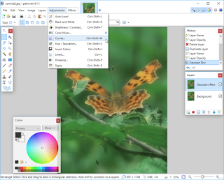 Paint.NET Free Download for Windows