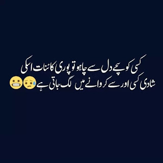 funny urdu quotes 11