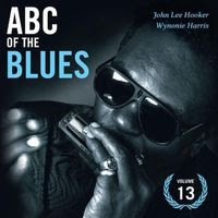 ABC of the blues volume 13