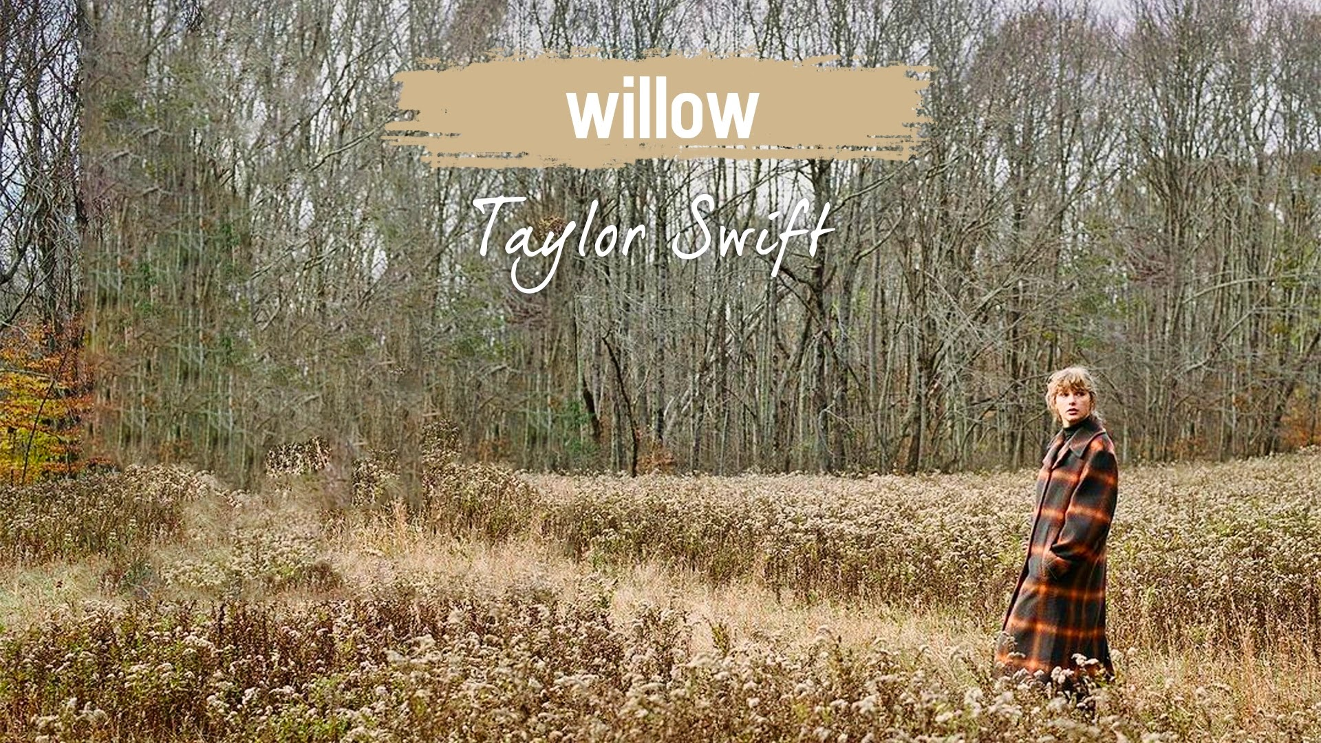 willow - Taylor Swift