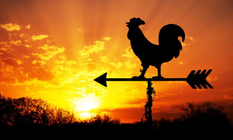 Manfaat dan Keutamaan Bangun Subuh Menurut Ajaran Islam