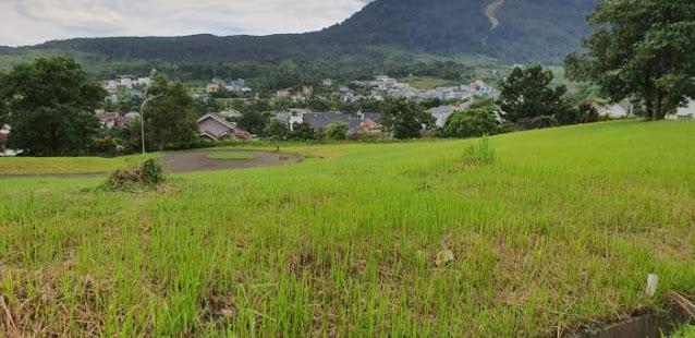Tanah di Sentul City yang Dihibahkan ke PBNU Bukan Milik Luhut, Ini Ceritanya