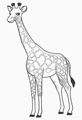 Desenhos de girafa