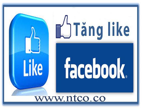 Uu dai khi tang like facebook tai NTCO