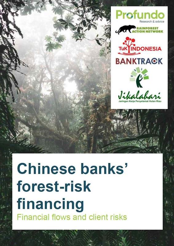 Forests & Finance: PC chinês é grande financiador do desmatamento no mundo