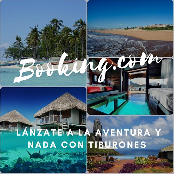 Lanzate-aventura-tiburones-Booking-Turismo-viajes-hoteles