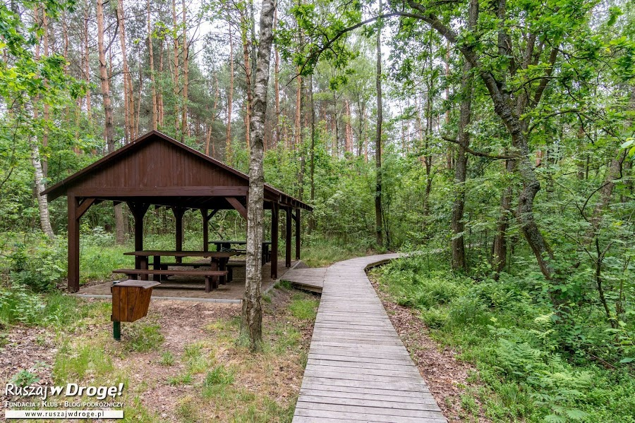 Ścieżka Dąb Dominik - Poleski Park Narodowy