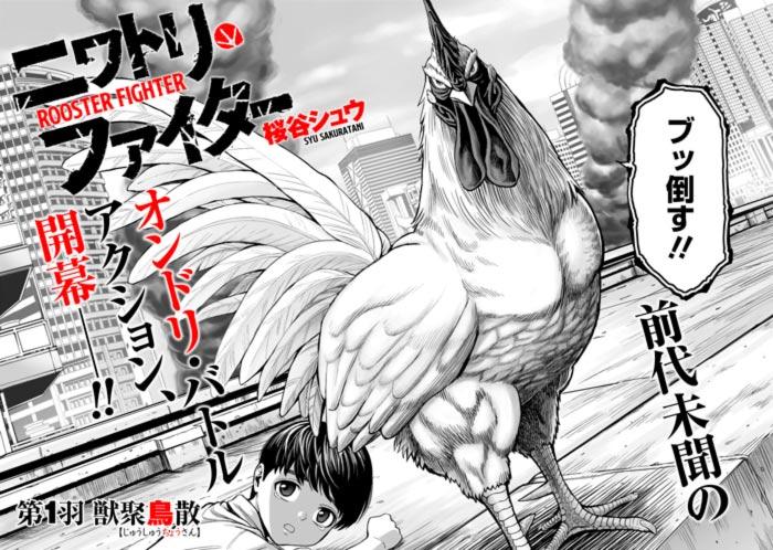 Rooster Fighter (Niwatori Fighter) manga - Syu Sakuratani
