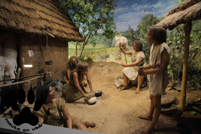 homo-sapiens-neolithique-provence