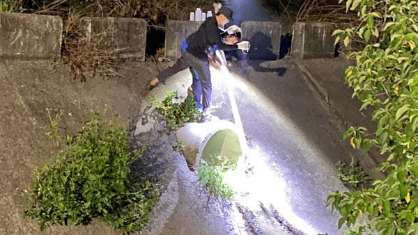 守護東螺溪水體環境 加強沿岸畜牧業廢水處理稽查