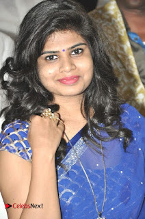 Happy Birthday Telugu Movie Audio Launch  0012