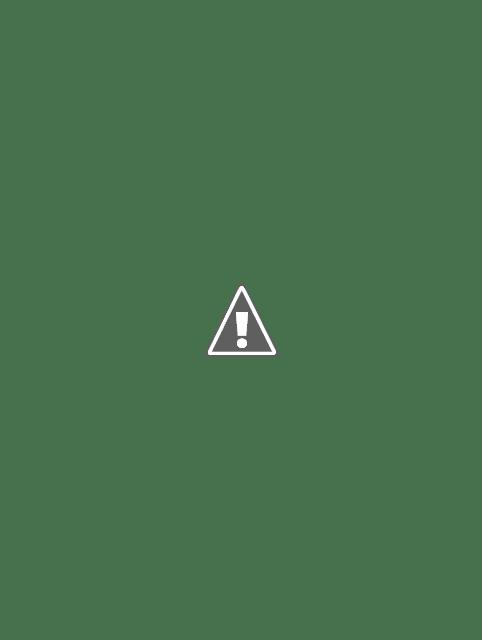 Long Coffee Brown Pea Coat