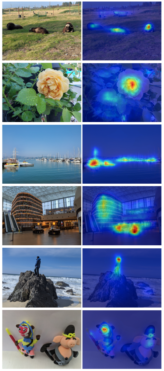 Example images and their predicted saliency