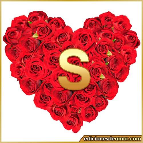 corazón de rosas con letra S