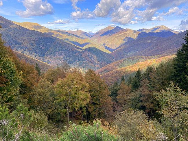 Dove vedere il Foliage in Piemonte