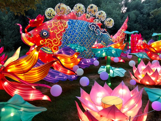 Dragon Lights Festival Reno