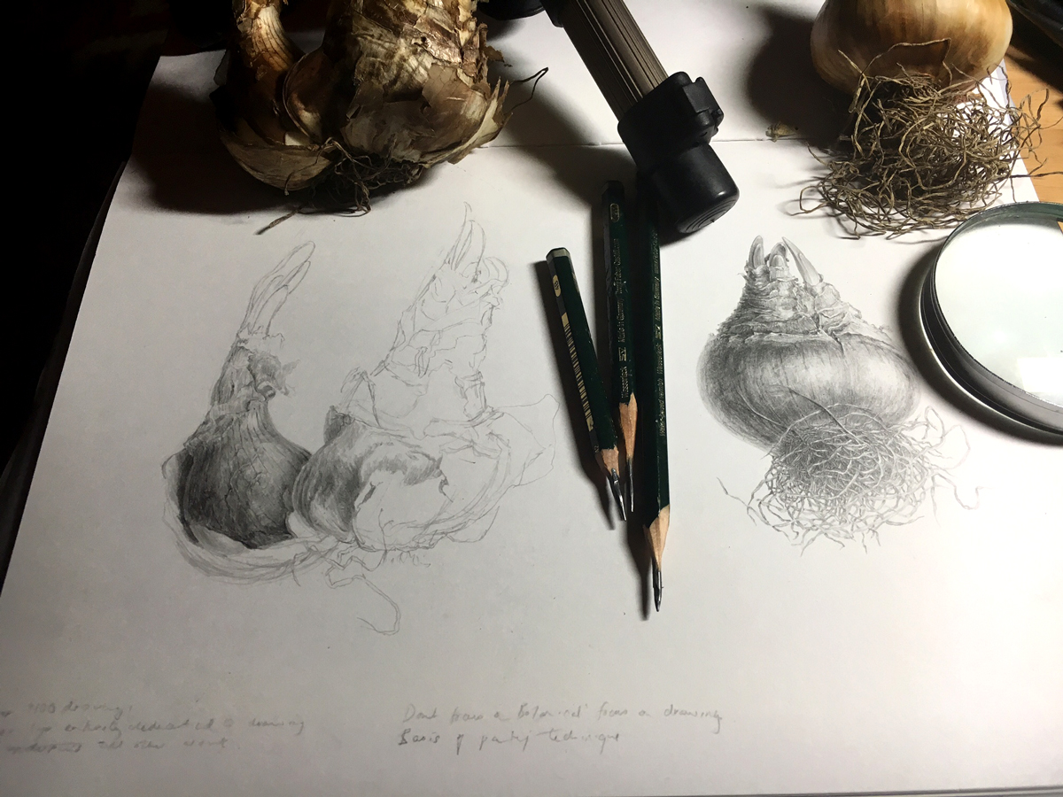 Image of pencils sketches and bulbs