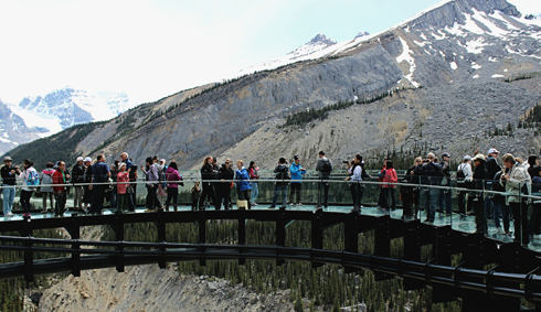 Glacier Skywalk Jasper National Park Alberta
