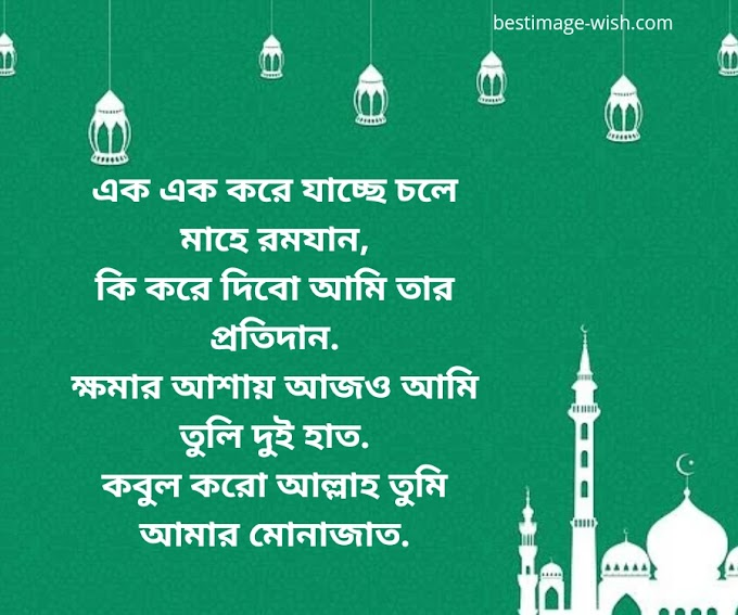 Best Islamic sms messages Bangla  ইসলামিক এসএমএস ইমেজ পিকচার কবিতা বাংলা  Best Islamic Bani images
