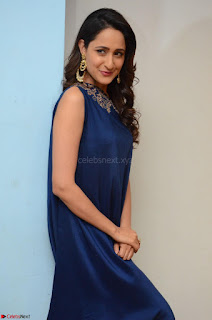 Pragya Jaiswal in beautiful Blue Gown Spicy Latest Pics February 2017 023.JPG