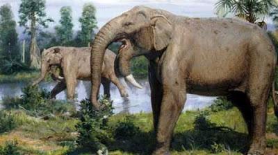 Deinotherium-antigos-elefantes-que-estão-extinguidos