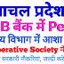हिमाचल प्रदेश में पंजाब नेशनल बैंक में Peon, आशा कार्यकर्ता और CLERK के पदों पर सरकारी नौकरियां