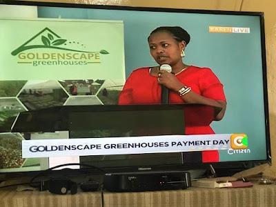 Goldenscape greenhouses escape with investors Money. PHOTO | FILE