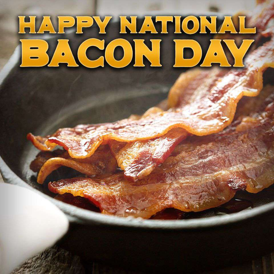 National Bacon Day Wishes Pics