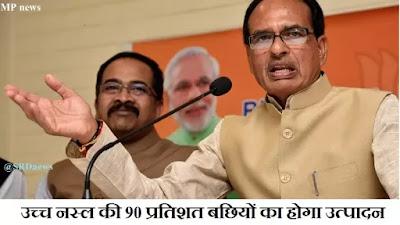 MP news : मुख्यमंत्री श्री चौहान 3 अप्रैल को करेंगे देश की दूसरी बड़ी परियोजना का शुभारंभ