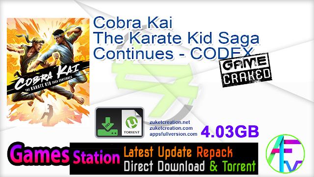 Cobra Kai The Karate Kid Saga Continues – CODEX