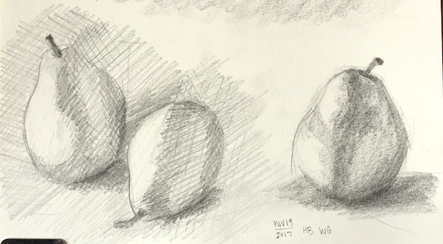 Daily Art 11-19-17 still life sketch in graphite number 22-22 -pears