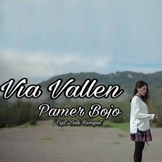 Download Lagu Mp3 Via Vallen - Pamer Bojo