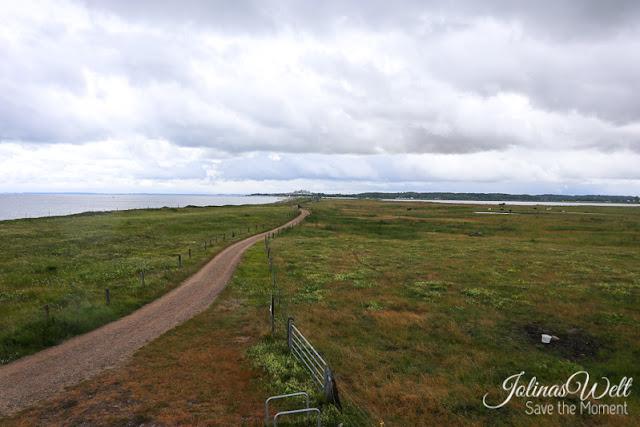 Naturschutzgebiet Schwansener See an der Ostsee