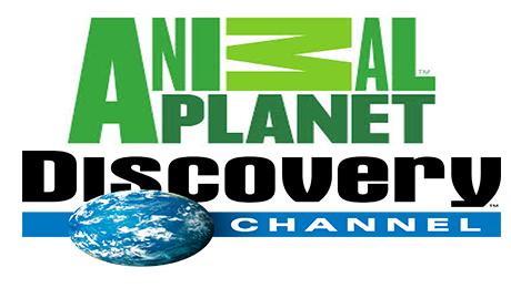 viasat streaming free