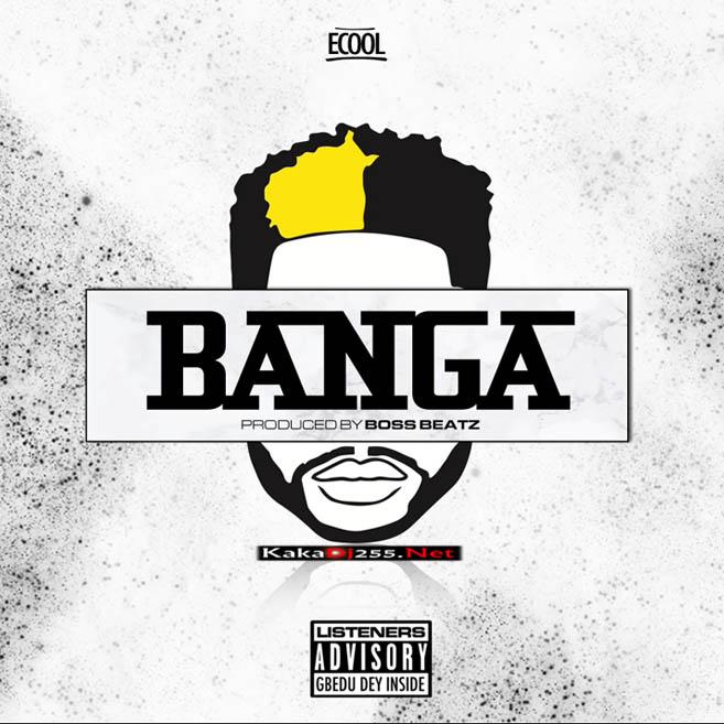 DJ ECool - Banga | Download Mp3
