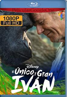 El único y gran Iván (2020) [1080p Web-Dl] [Latino-Inglés] [LaPipiotaHD]