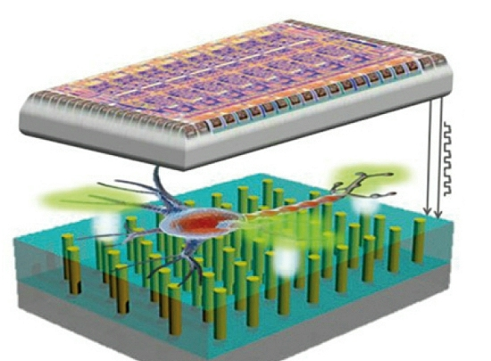Chipscope, the microscope on a chip that can revolutionize medicine