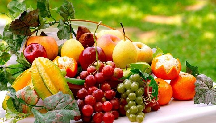 Export Genius: List of Russian Buyers of Citrus Fruits with