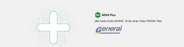 nginx plus