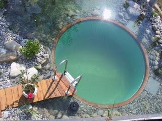 สระว่ายน้ำธรรมชาติ