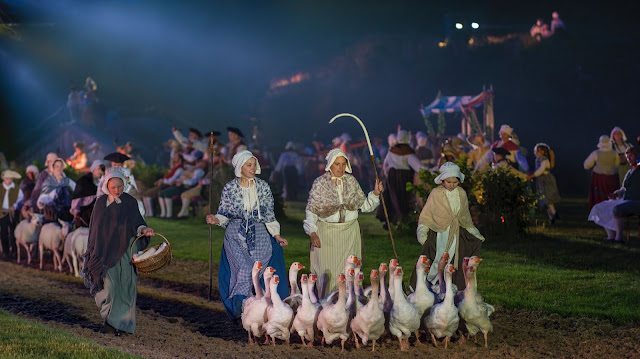 geese at Kynren walking on the track