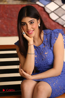 Actress Aditi Singh  Pictures in Short Dress at Movie Interview  0127.JPG